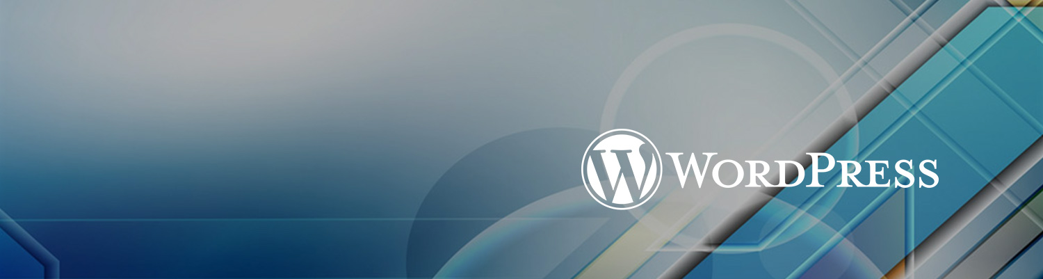 wordpress website design agency